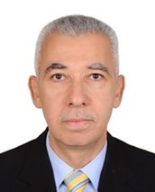 Mahmoud M. Elmadhoun