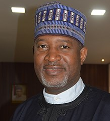Image result for hadi sirika minister